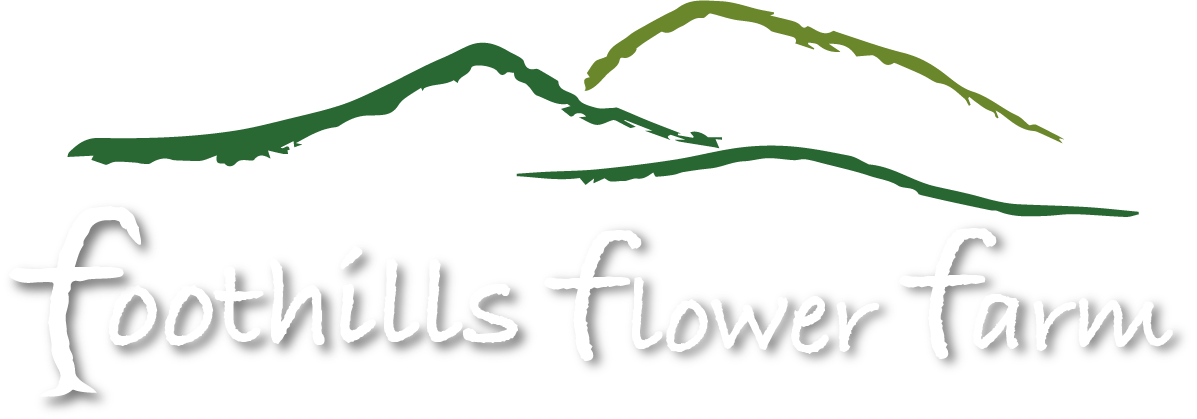 Foothills Flower Farm